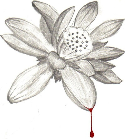 Cropped lotus with blood drop